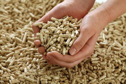 A handful of wood pellets.